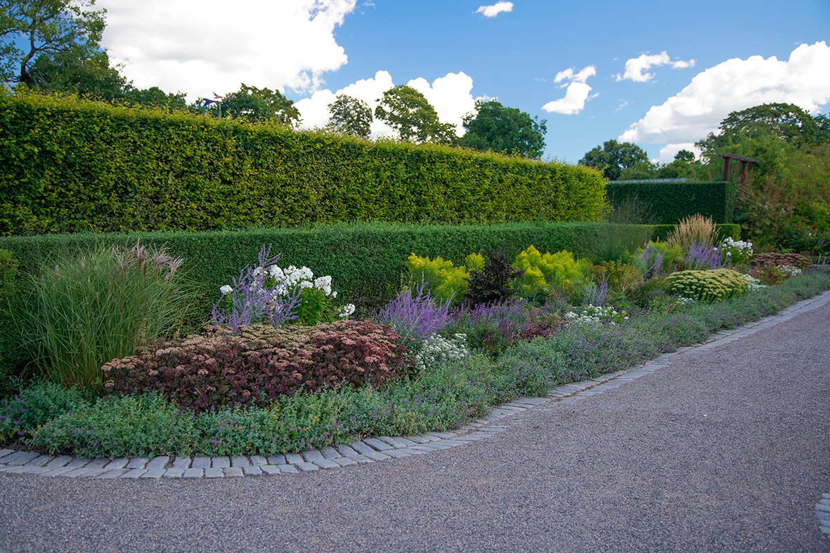 Rosendals Trädgård hedges