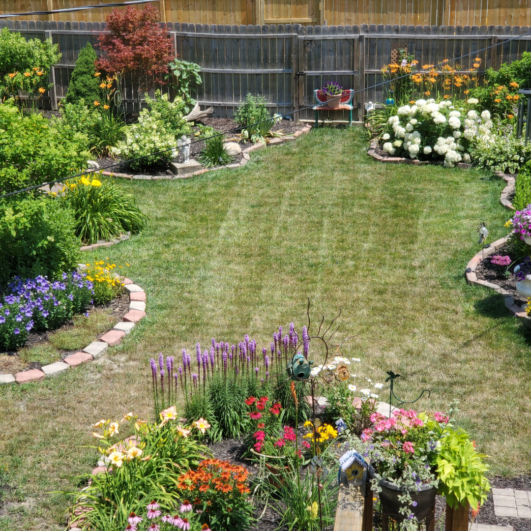 Garden from above