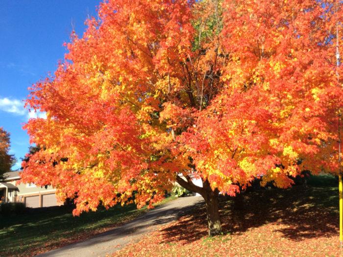 October in Ontario