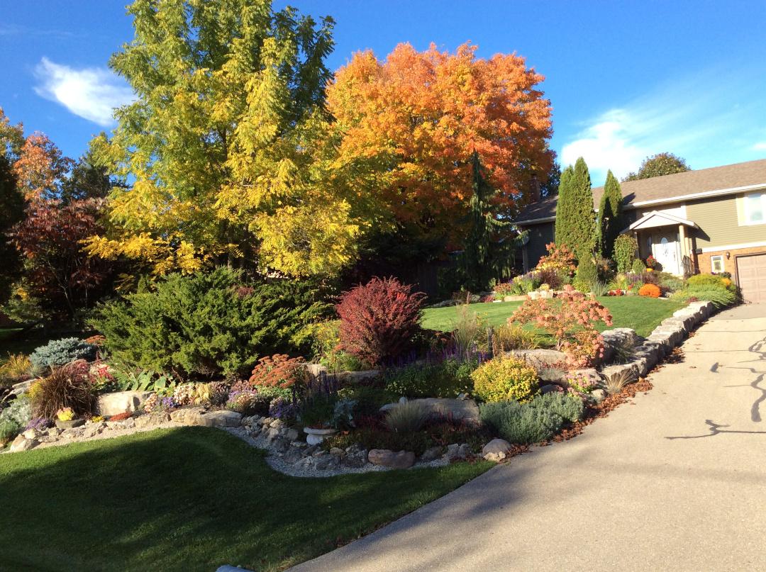 front yard fall garden