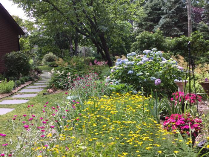 Gardening for 50+ Years