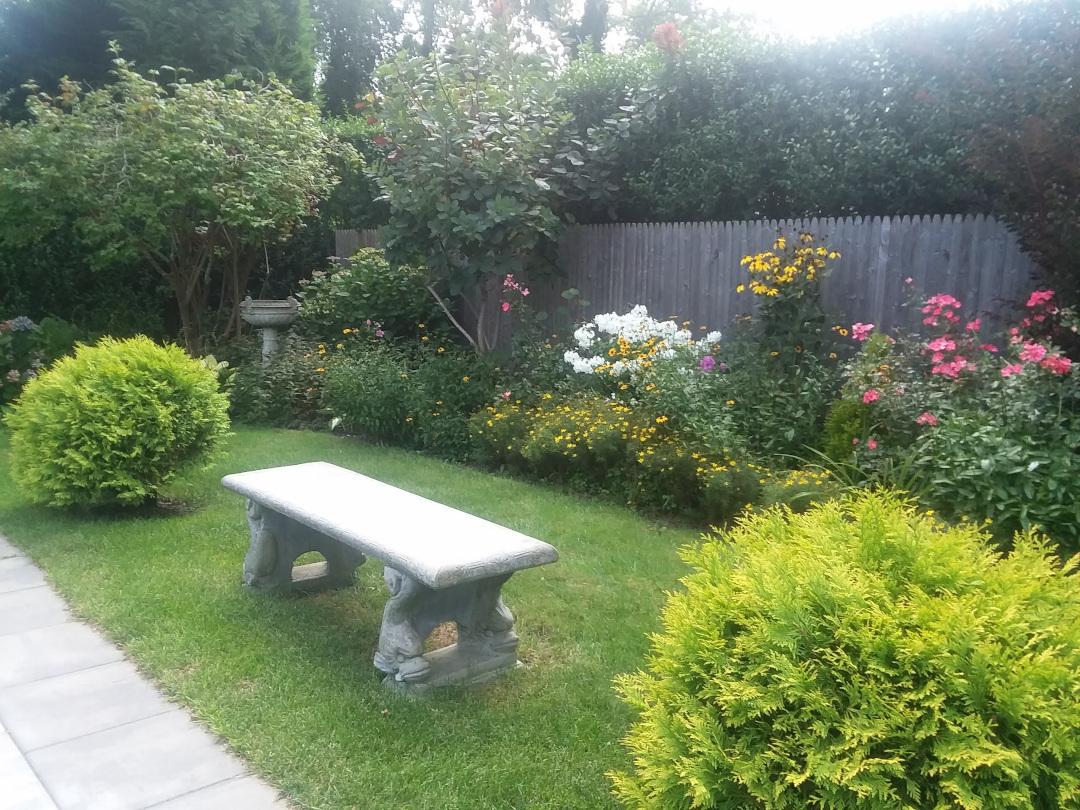 garden along fence