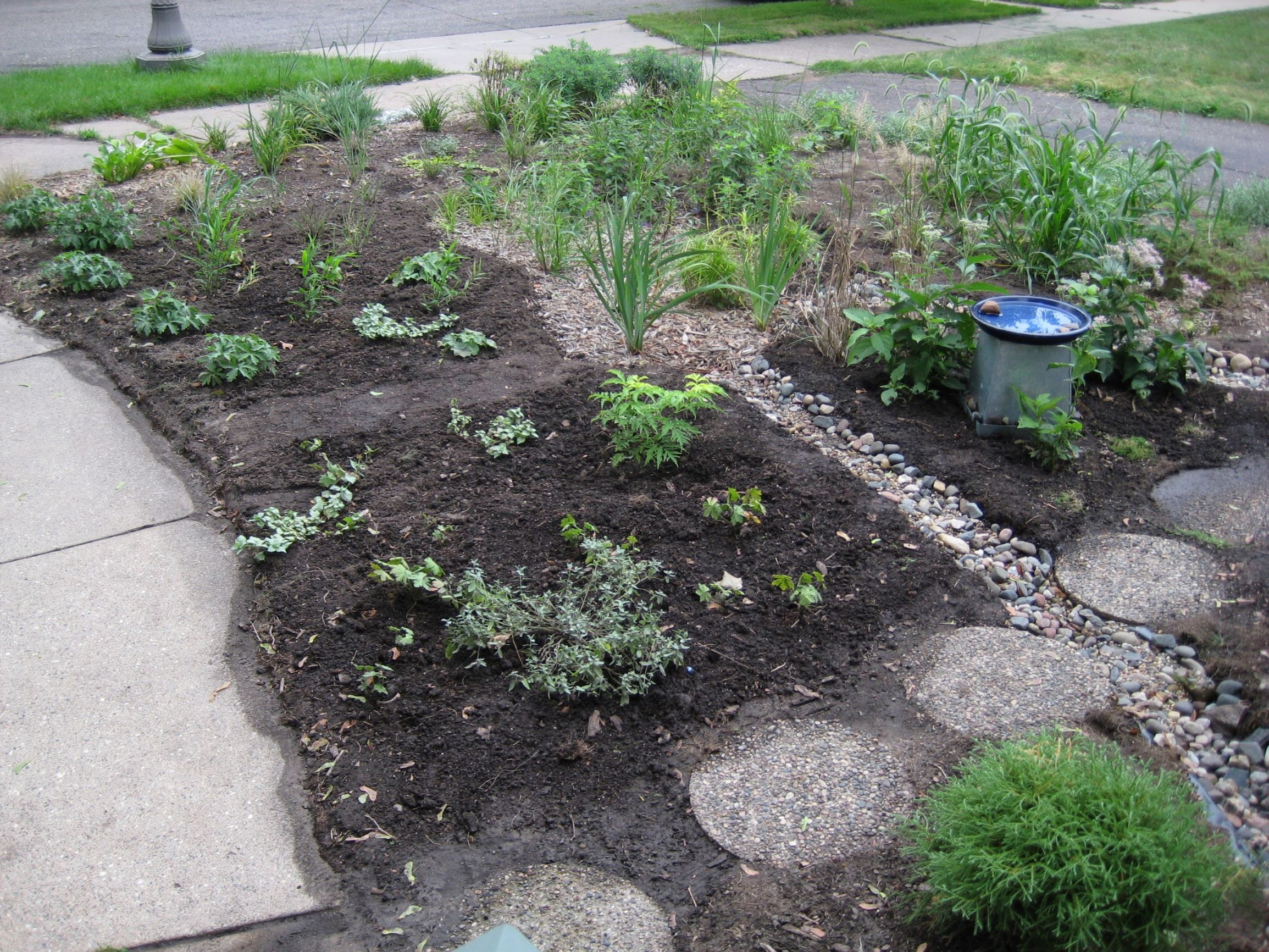 newly-planted garden
