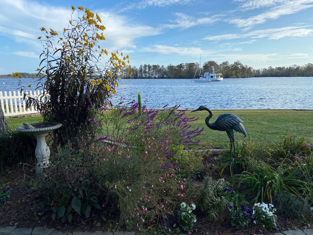 garden by water
