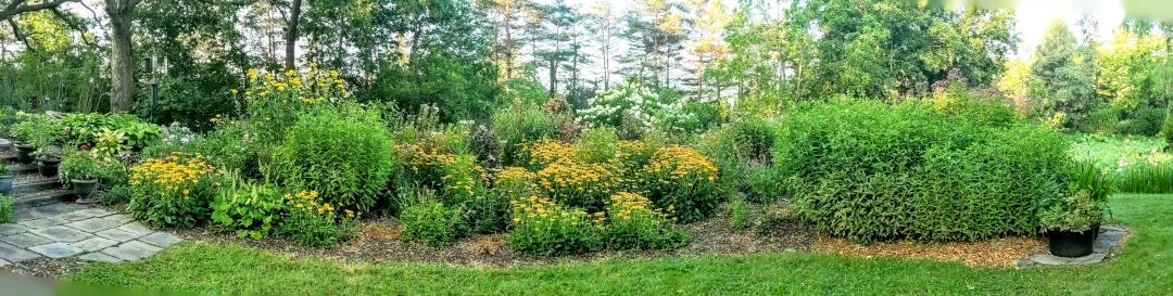 garden berm