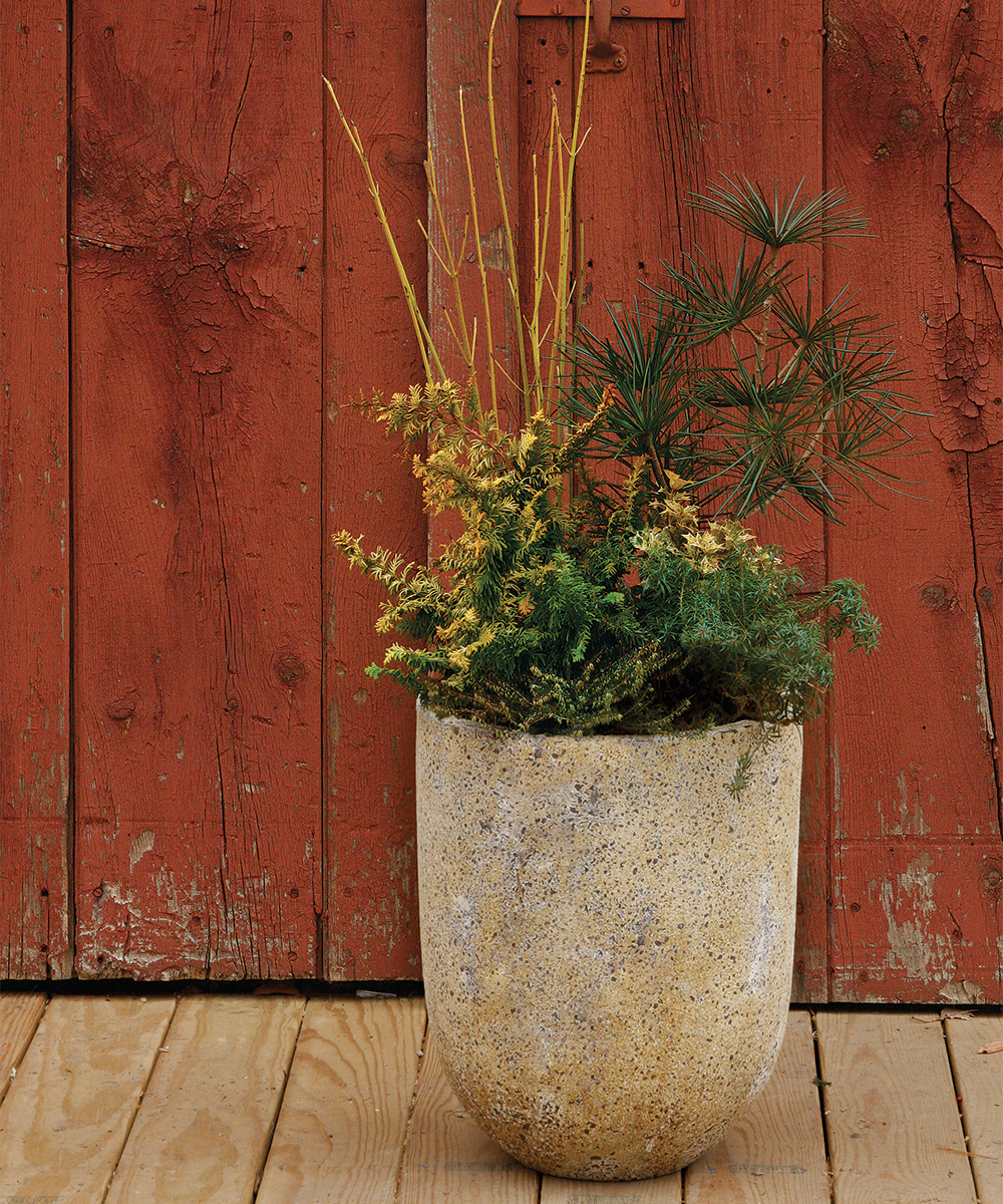 Tall winter container