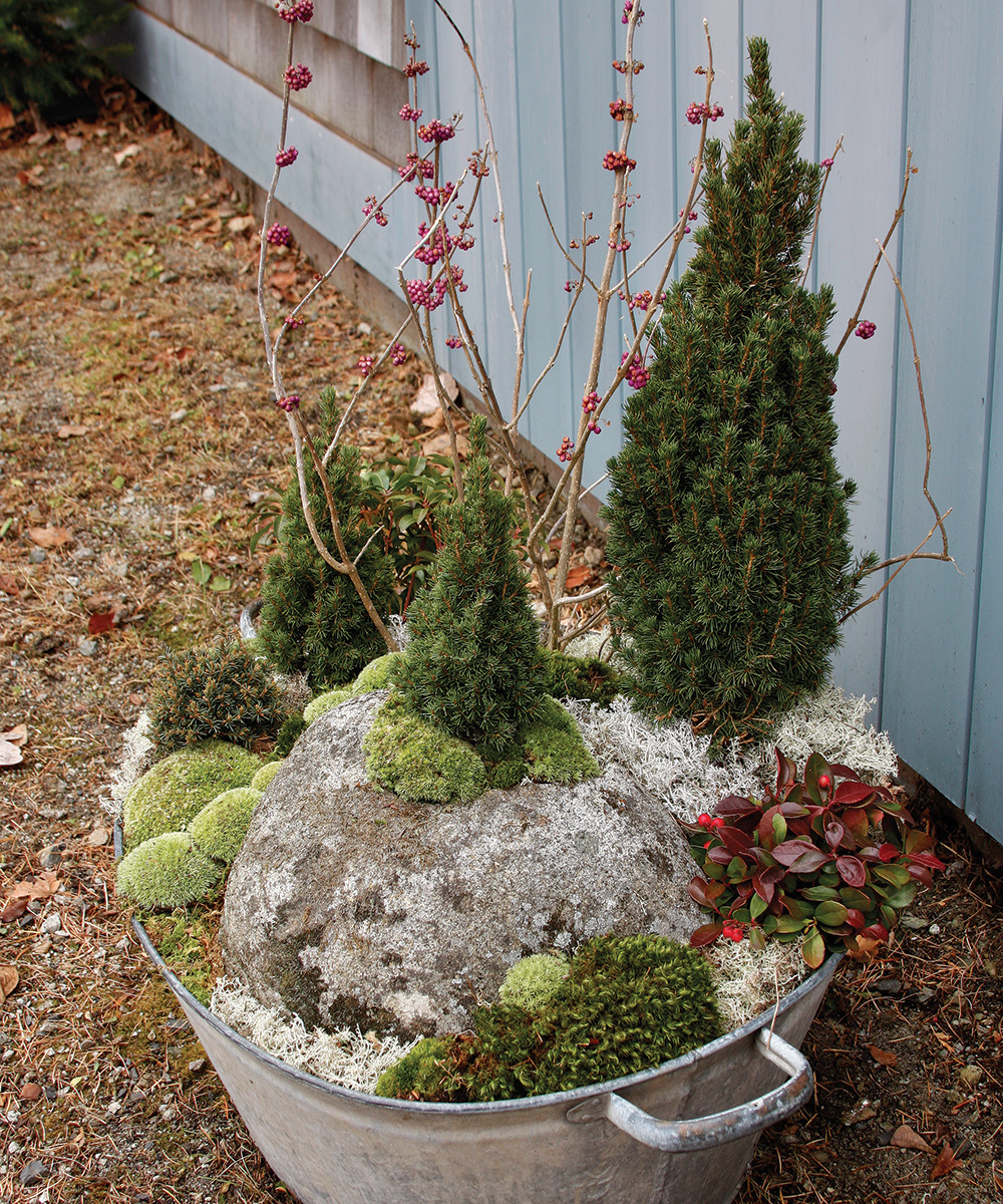 winter container with a stone