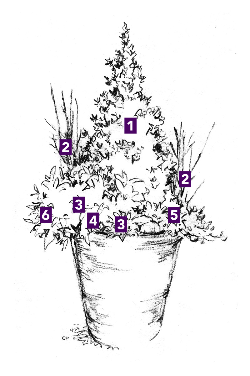 winter container with natural look plant ids