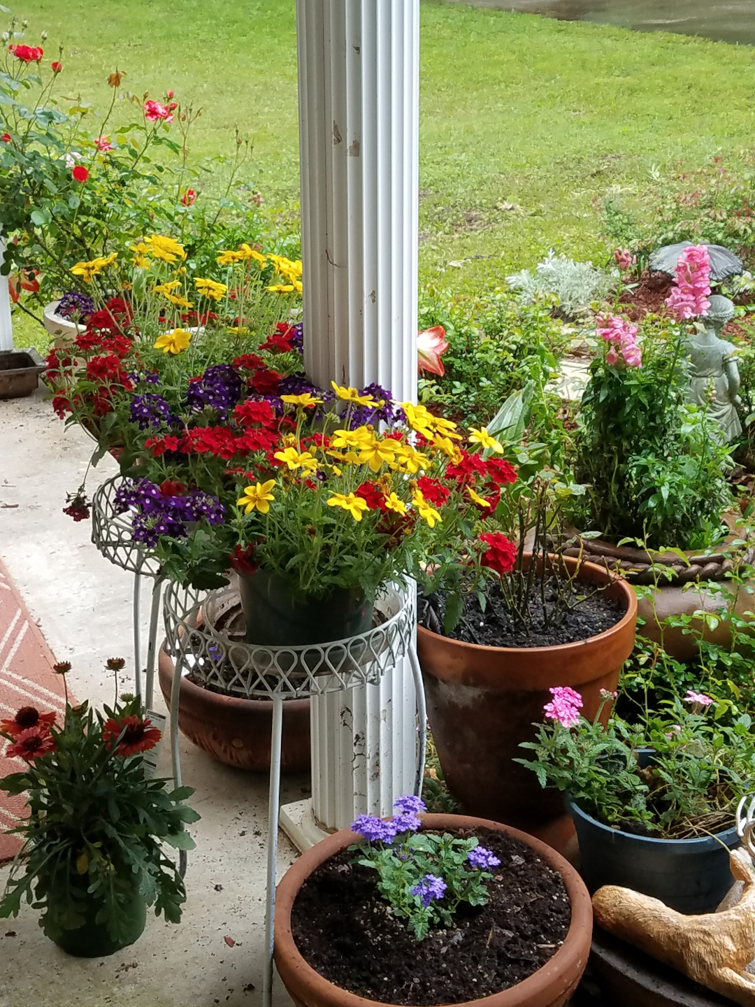 Pots of brightly colored annuals