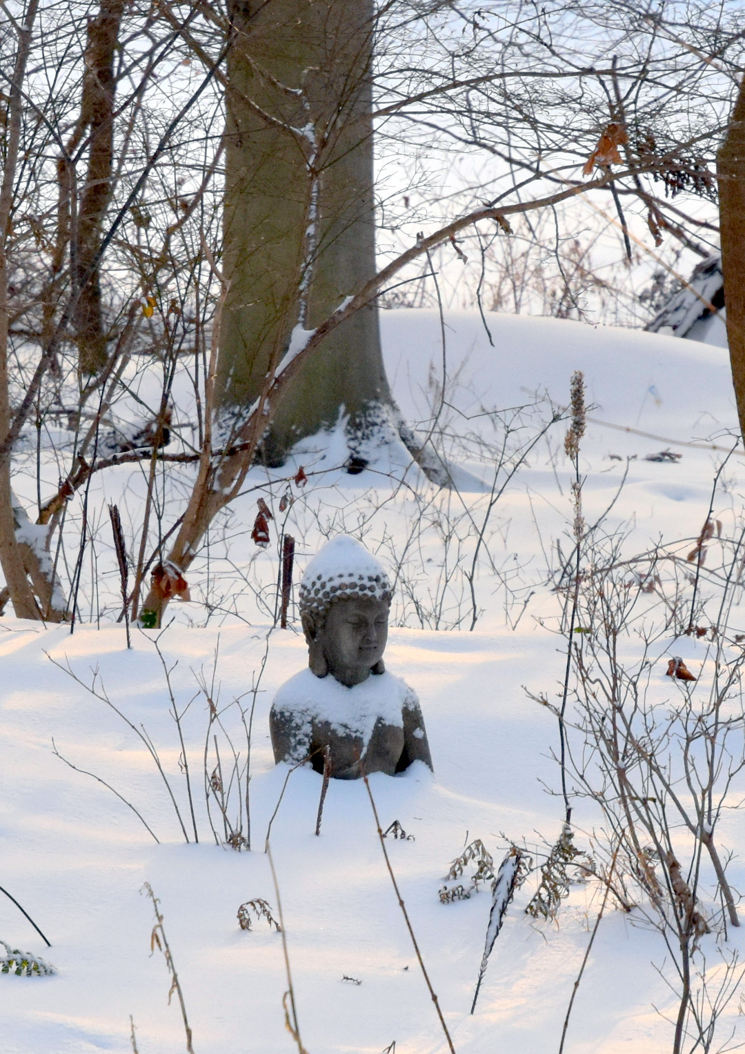 Buddha statue in snow
