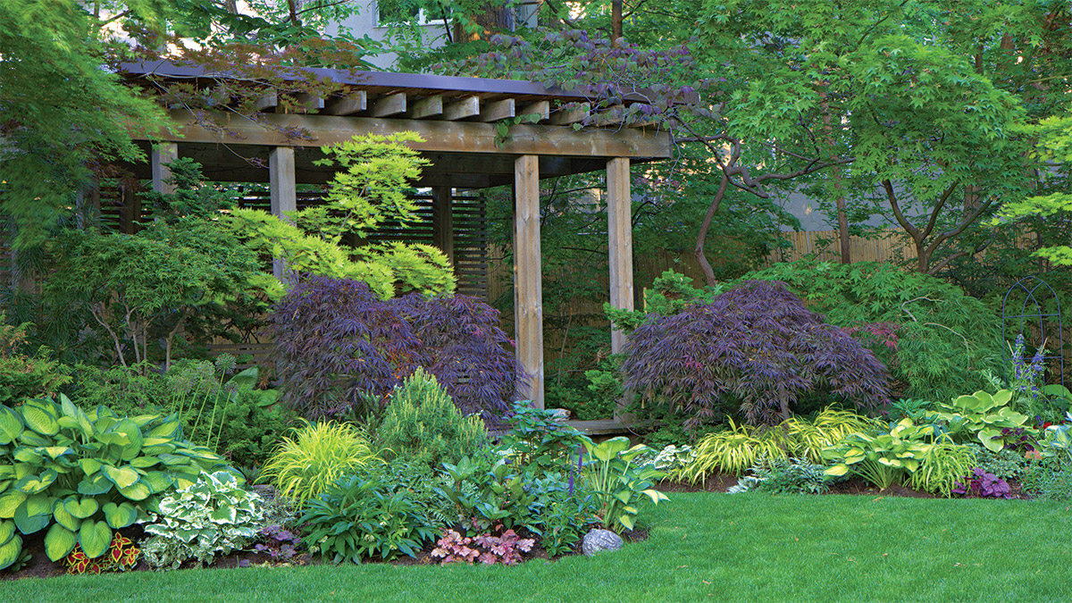 garden beds in the shade