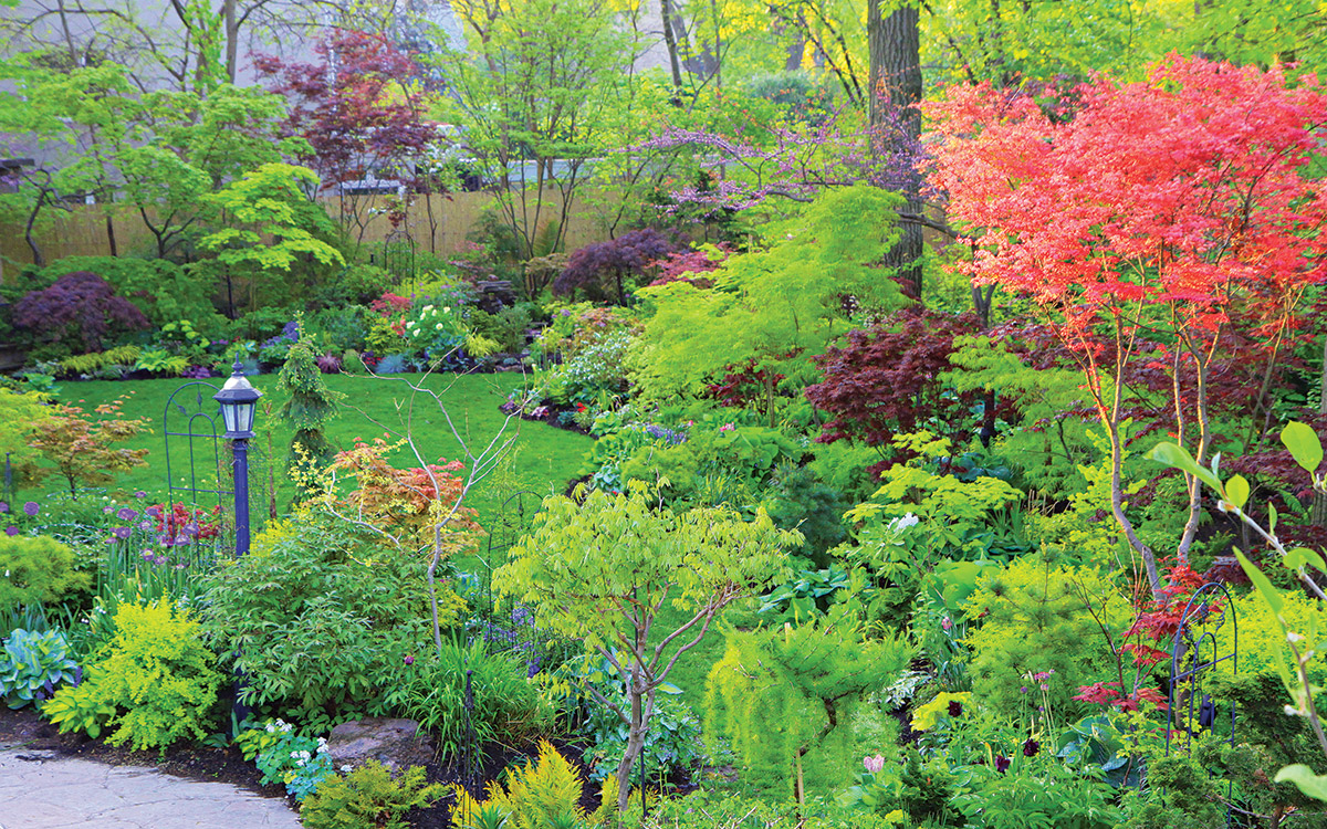 Deep red and chartreuse garden theme