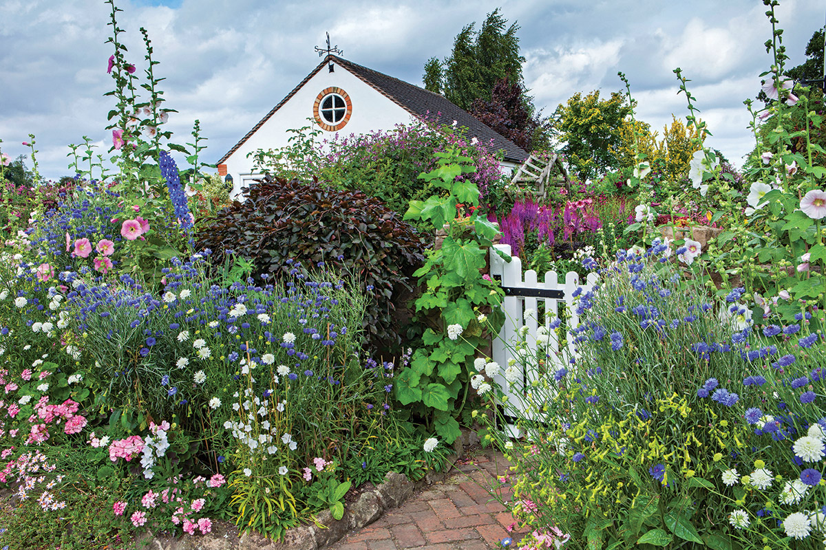 Announce an entryway with annuals