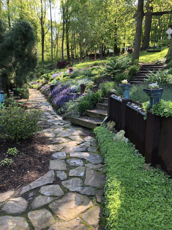 Flower garden planted on a hillside