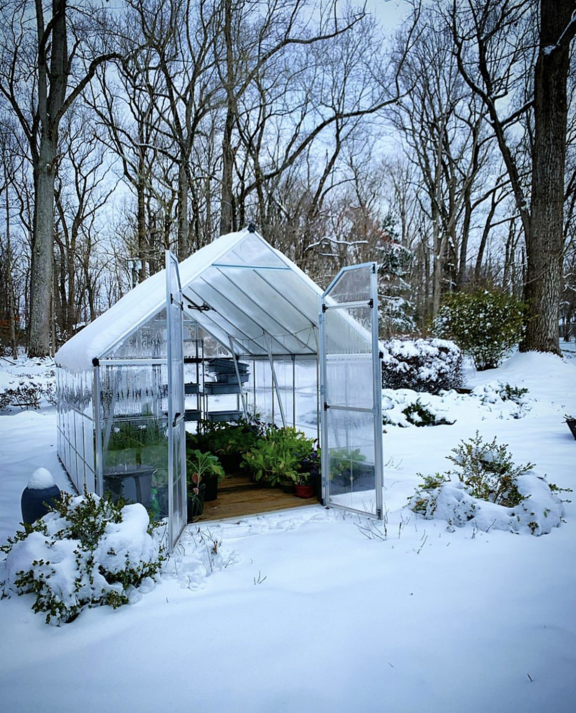 A small greenhouse in a snowy landscape