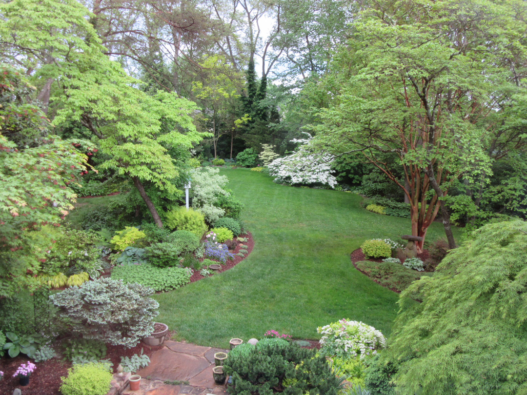 garden with lots of trees in spring