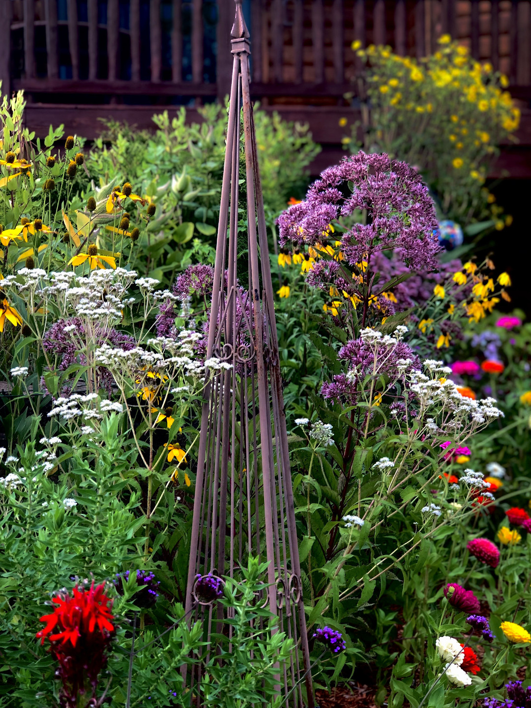 native perennials mixed with annuals