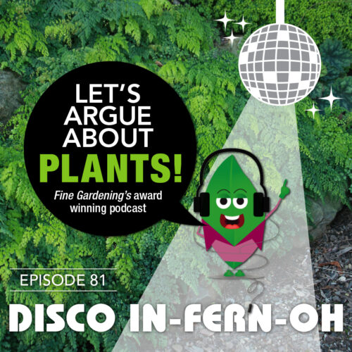Episode 81 Disco in-FERN-oh