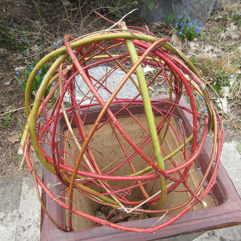 Bent willow and dogwood sphere
