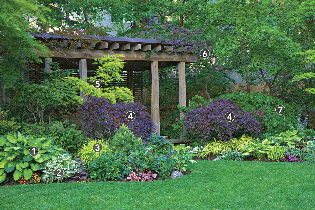 pergola surrounded by shrubs and trees