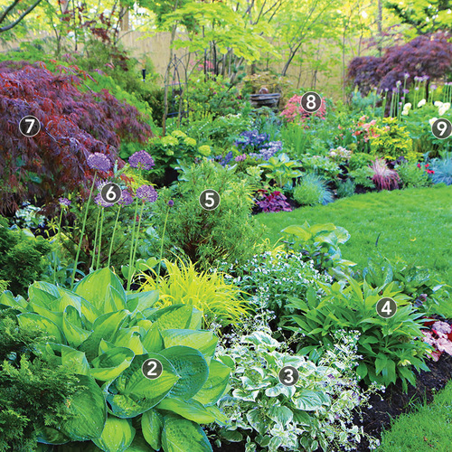 colorful shade garden plant ids