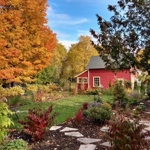 Trees turning autumn colors around a red barn