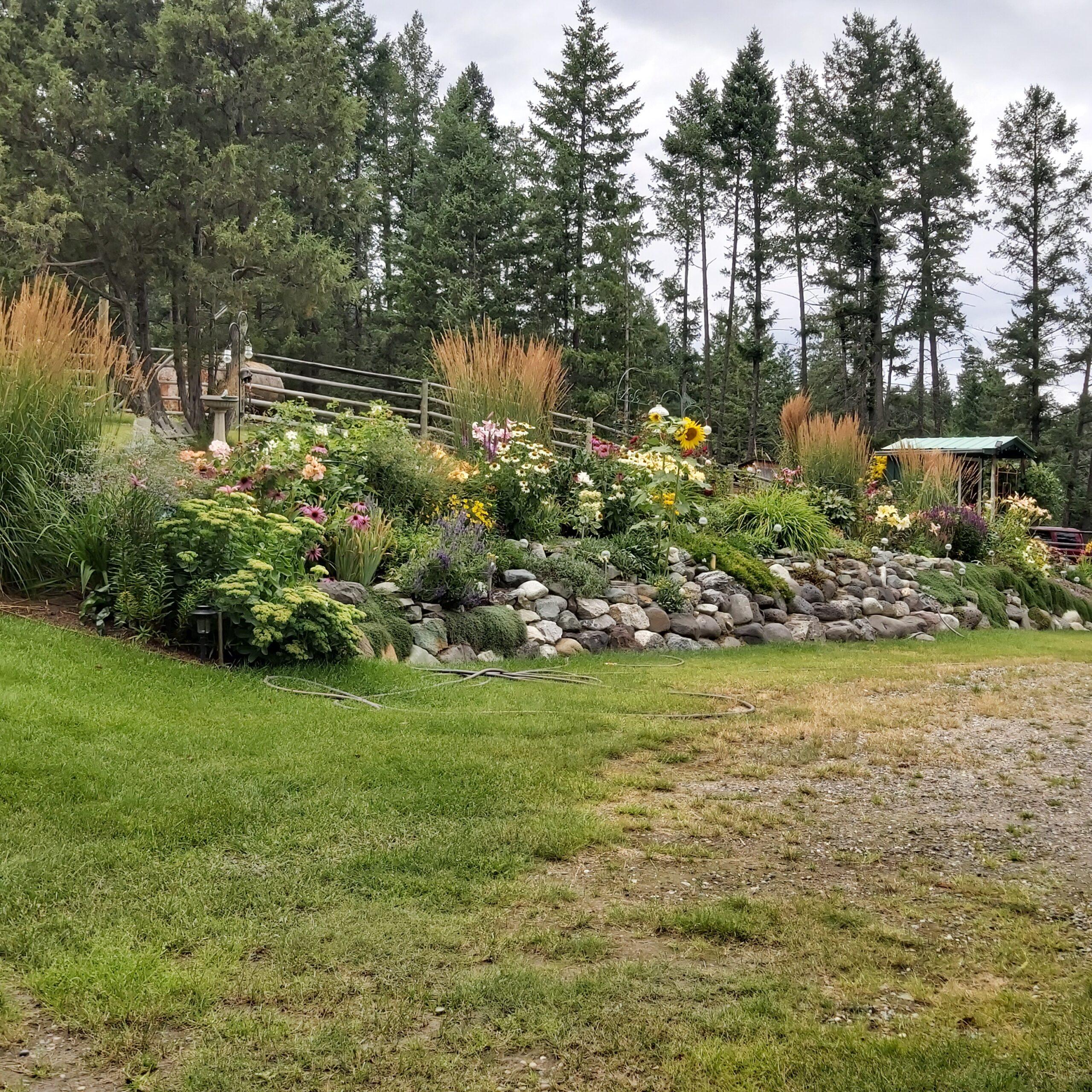 A garden bed on a hillside