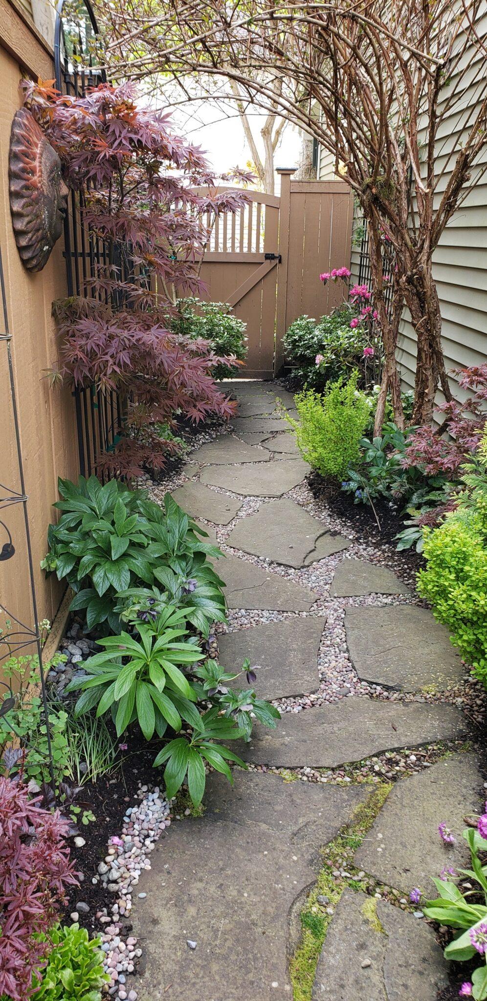 narrow garden space