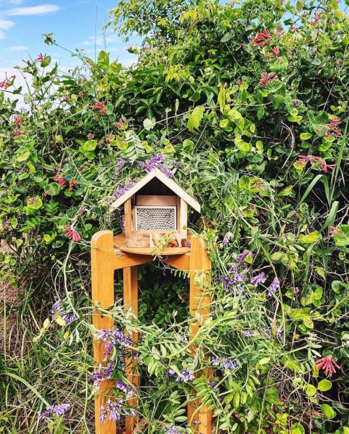 Bee house mounted among vining plants