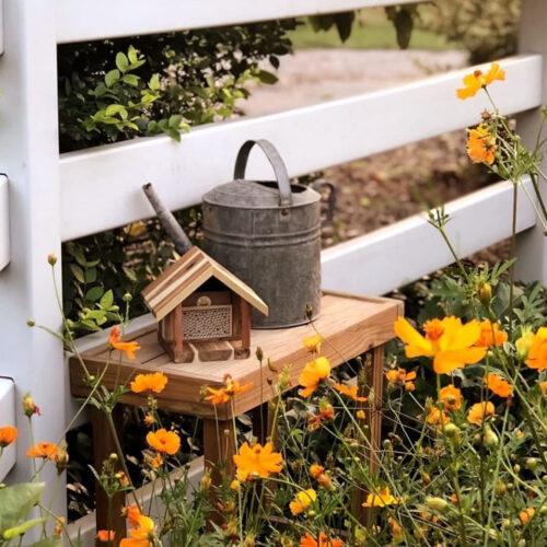 bee house around flowers