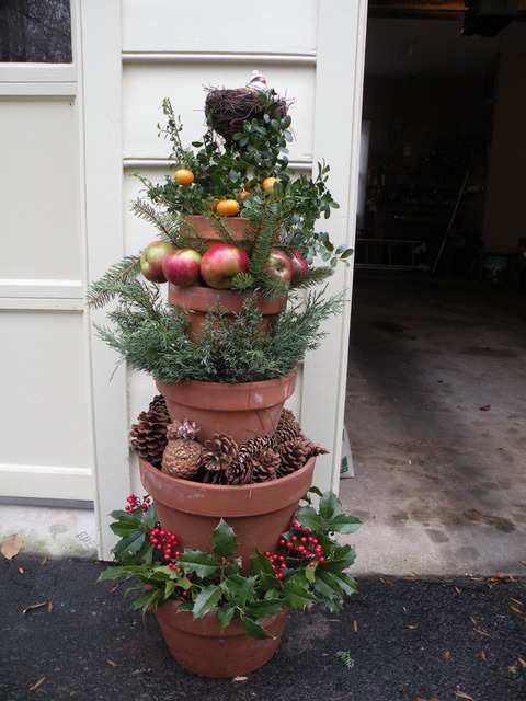 winter garden container with evergreens