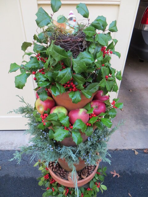 winter garden container with holly