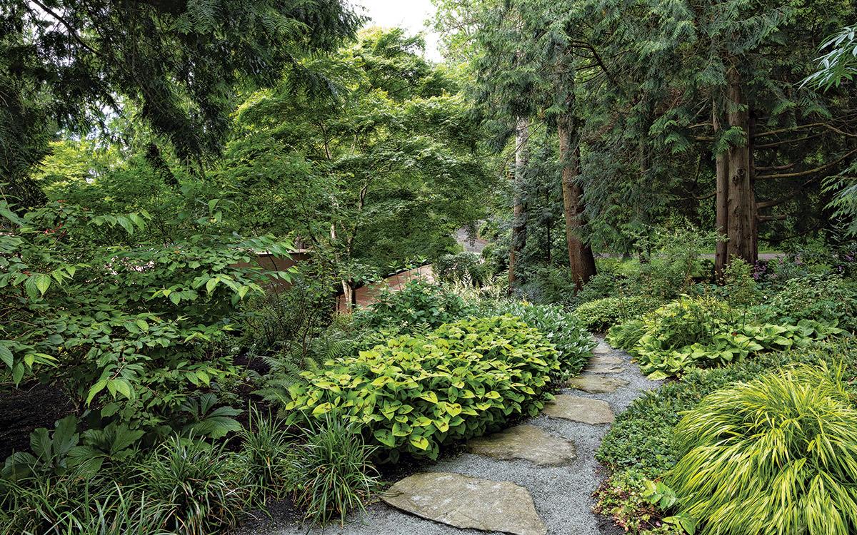 woodland garden with deer resistant plants