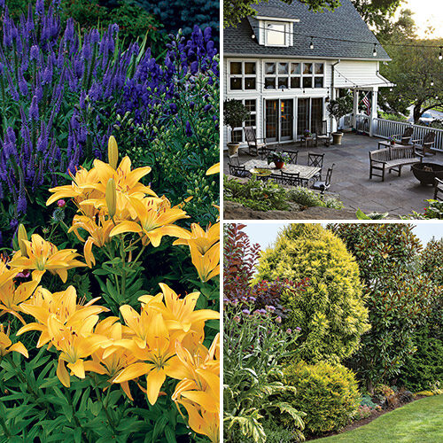 expert garden design tips