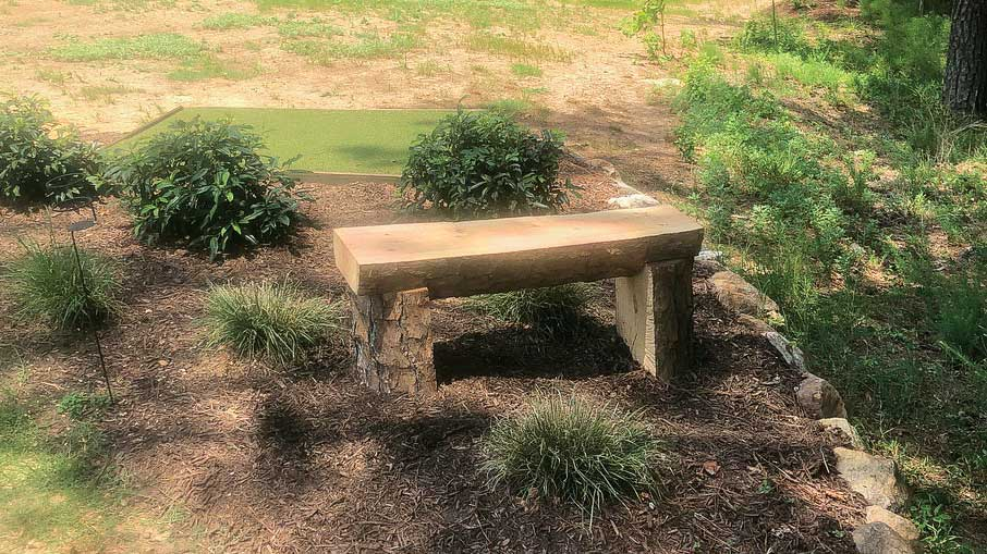From dead tree to wood bench