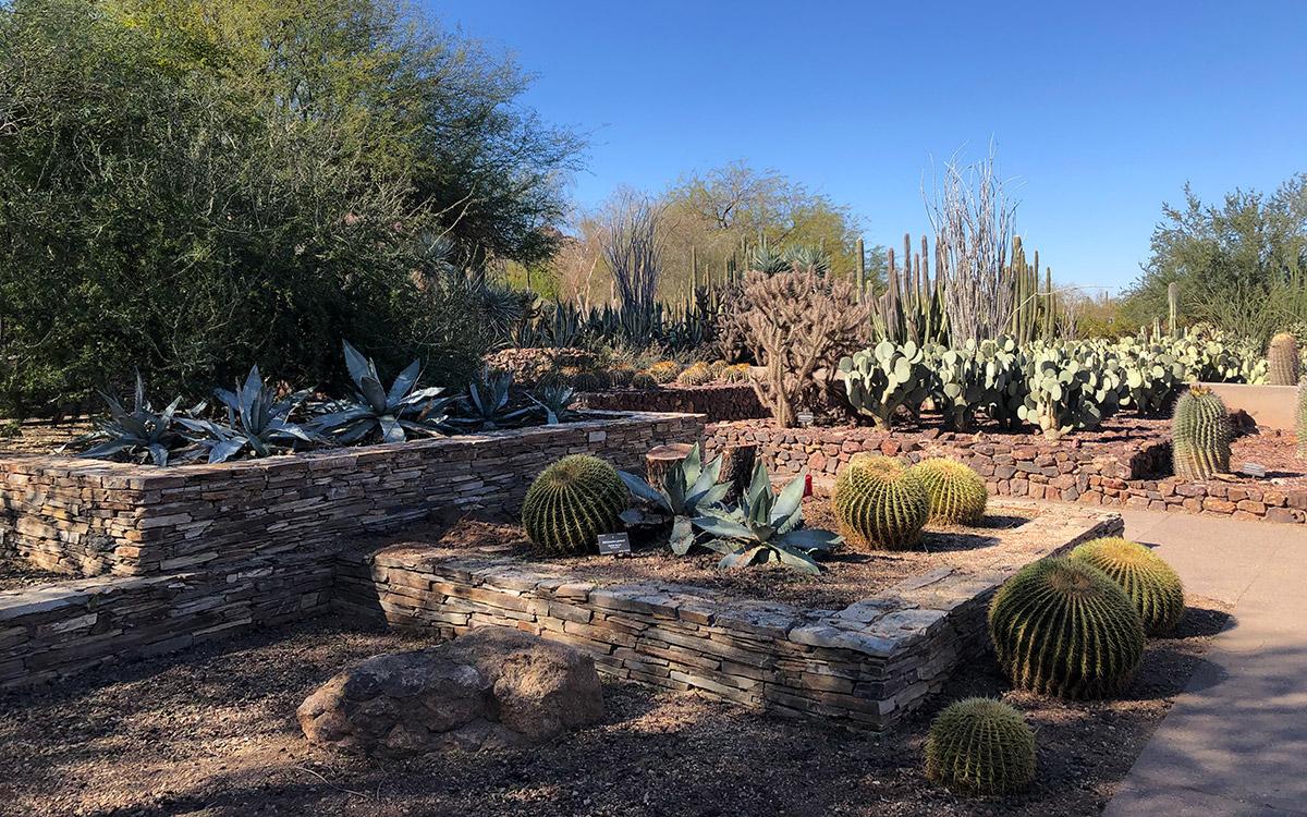 Desert Botanical Gardens Entrance