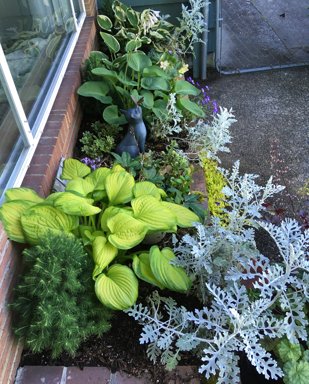 Front window box with hostas