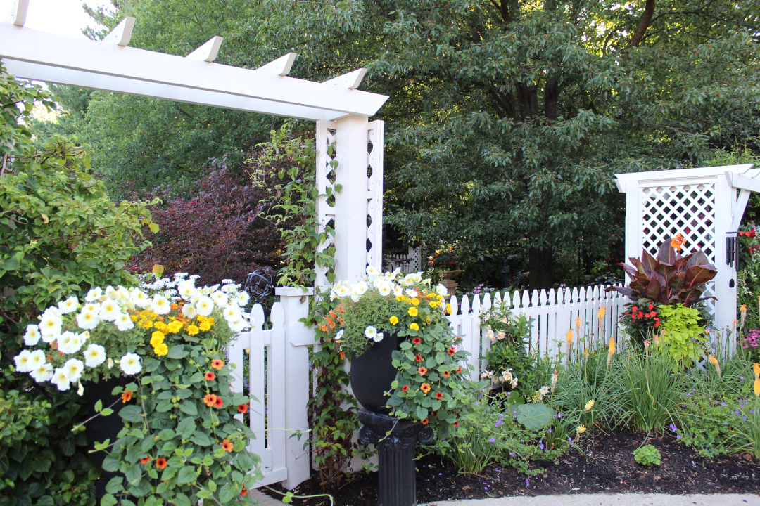 fence with garden bed in front