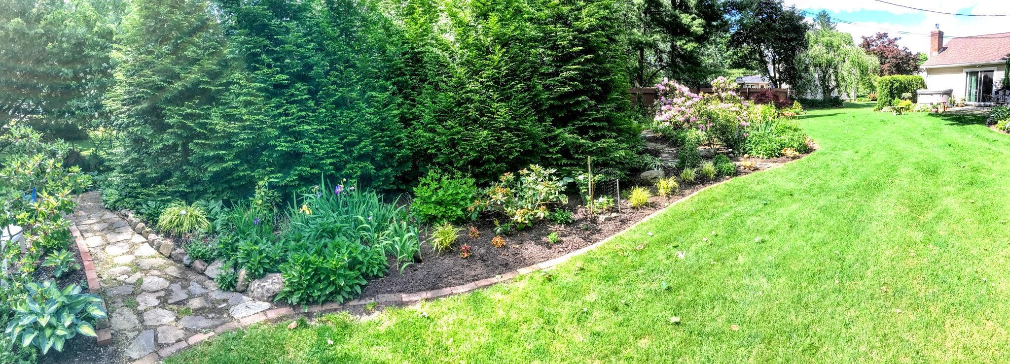 Garden path through trees