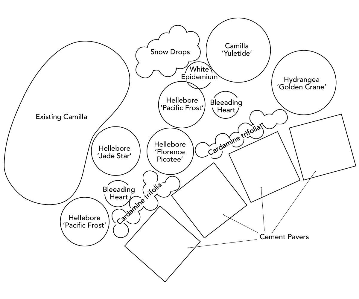 spring border garden plan