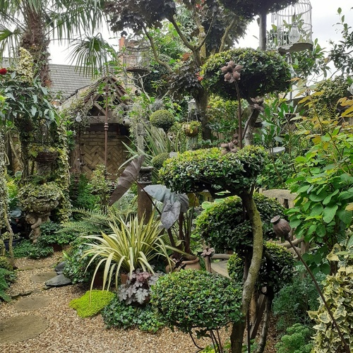 garden with lots of varied foliage and no flowers