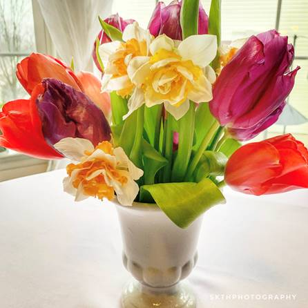 tulips and daffodils in a vase