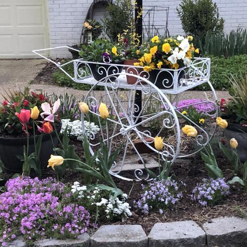 garden cart full of plants