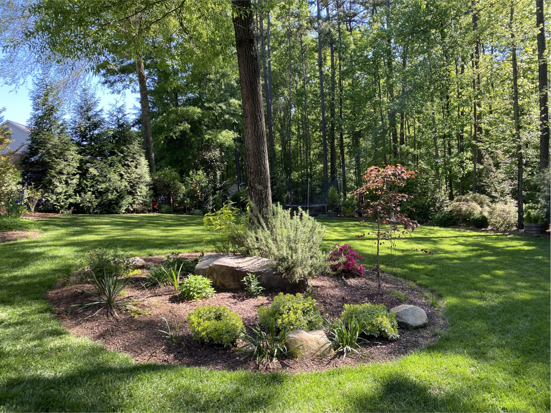 Garden bed surrounded by lawn and tall trees