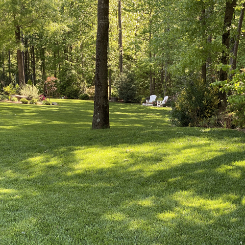 large mowed lawn with garden chairs in the back corner