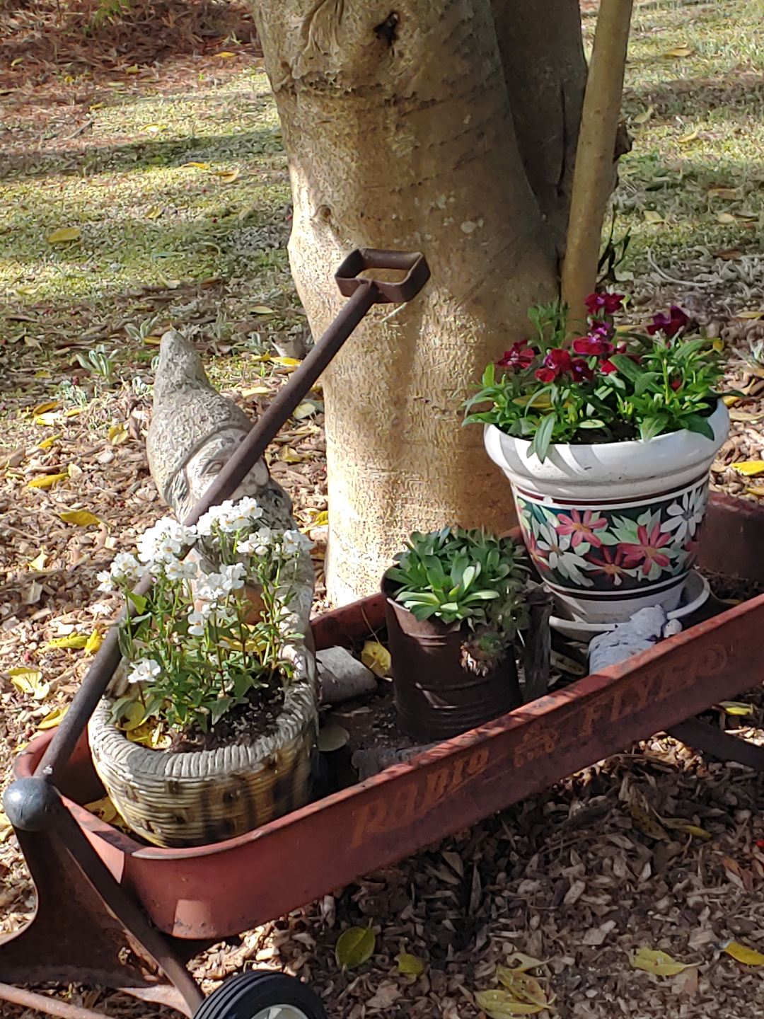 A childs wagon with three pots of flowers in it.