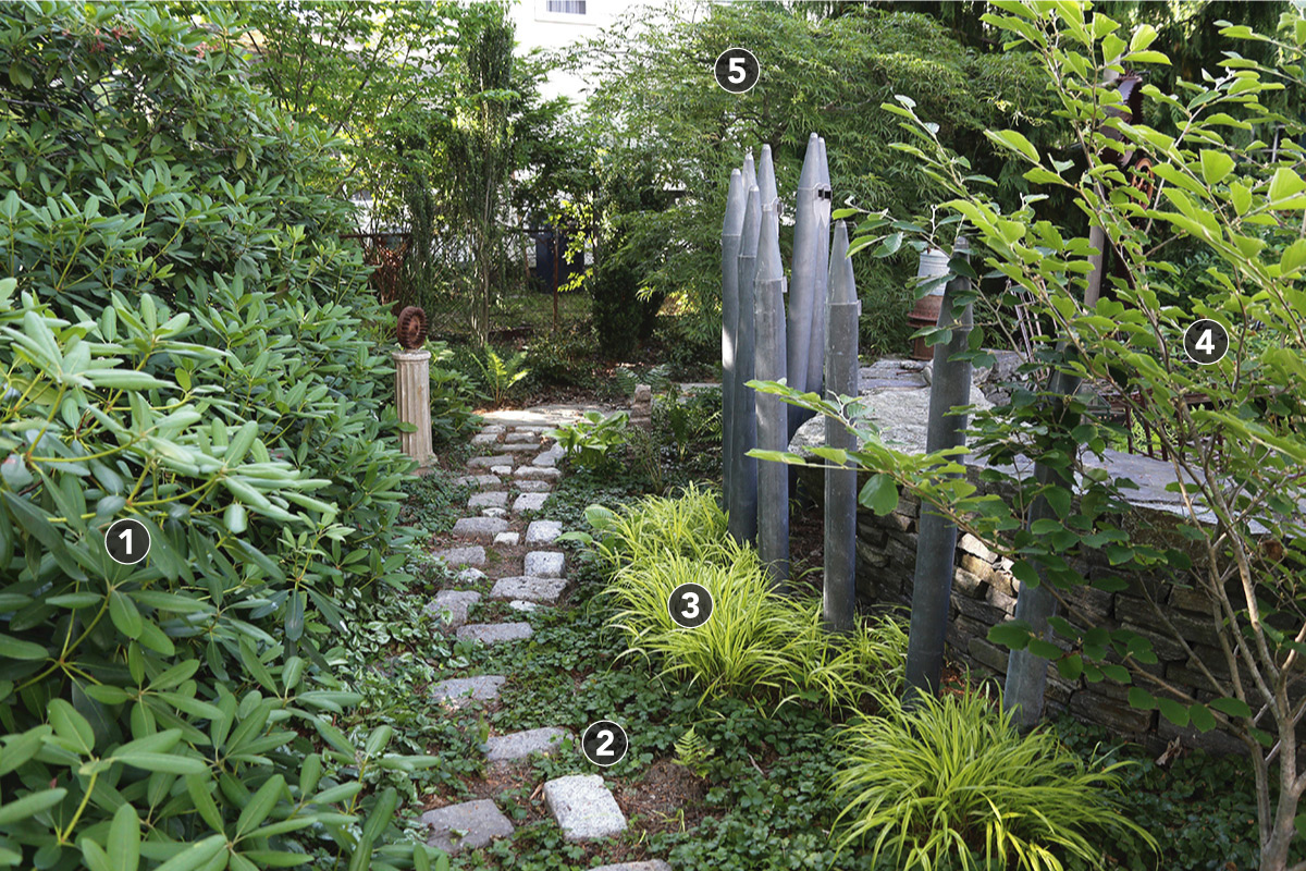 garden path lined by ornamental grass and trees