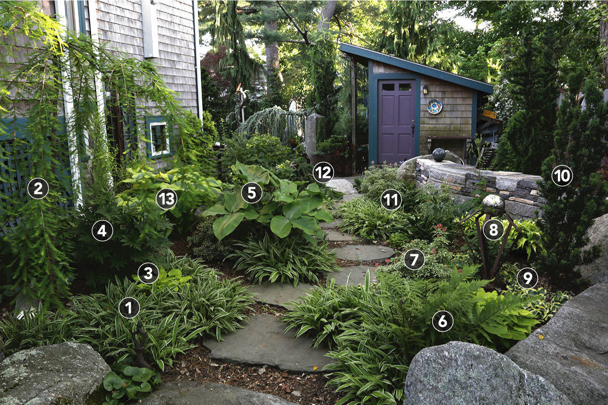 garden path leading to garden shed with purple door