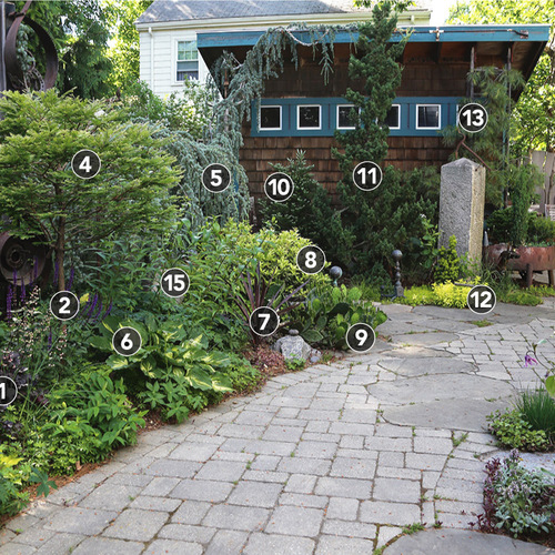 hardscaping with plants