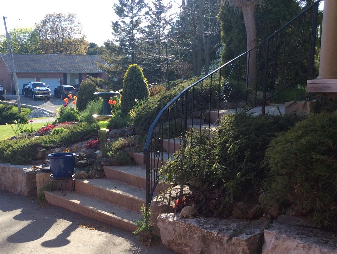 front yard garden in spring